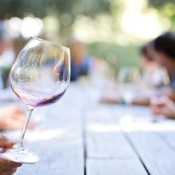 """Vuelve """"El Vino, a secas"""", el curso impartido por la UEMC"""